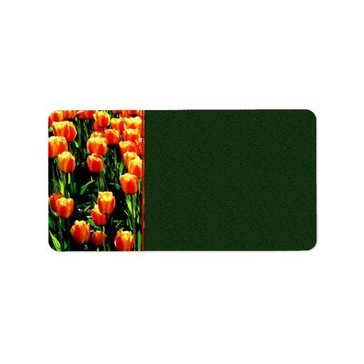 Sunshine Tulips Label