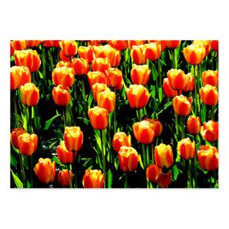 Sunshine Tulips Large Business Card