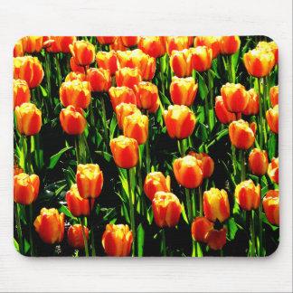 Sunshine Tulips Mouse Pad