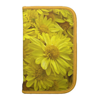 Sunshine Yellow Chrysanthemums Organizers