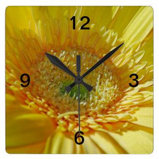 Sunshine Yellow Gerbera Daisy Square Wall Clocks
