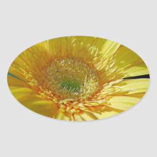 Sunshine Yellow Gerbera Daisy Oval Sticker