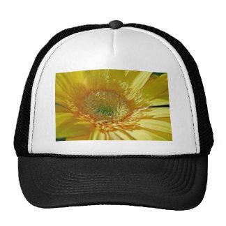 Sunshine Yellow Gerbera Daisy Trucker Hat
