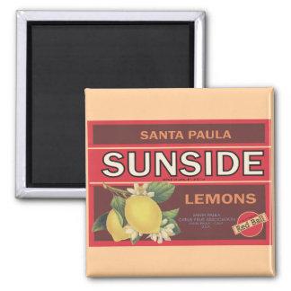 Sunside 2 Inch Square Magnet