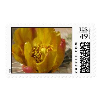 Sunsine & Sweetness (1) Postage Stamps
