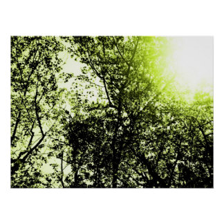 SunTrees Posters