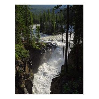 Sunwapta Falls en parque nacional de jaspe Postal