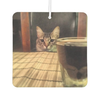 Sup Beer? Funny Humor Kitty Cat Photo Photography Air Freshener