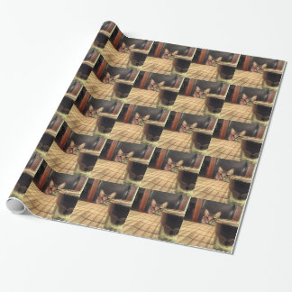Sup Beer? Funny Humor Kitty Cat Photo Photography Wrapping Paper
