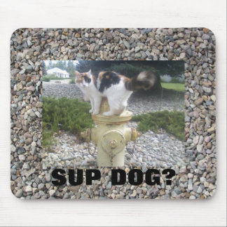 Sup Dog? Cat on Fire Hydrant Mouse Pad