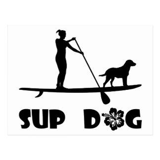 SUP Dog Standing Postcard