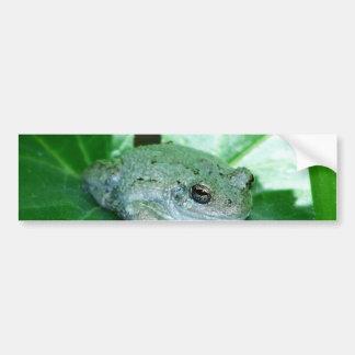 Sup Frog Bumper Sticker