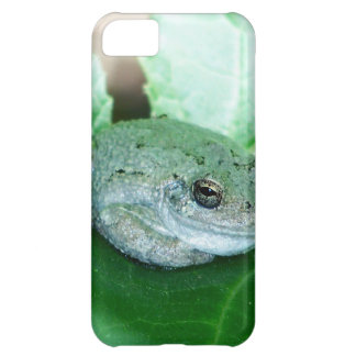 Sup Frog Case For iPhone 5C
