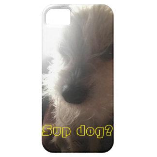 Sup og? Dog face iPhone SE/5/5s Case