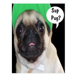 Sup Pug? Postcard