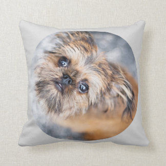 Sup Up Pup Rup Brussels Griffon Pillow