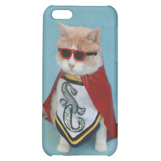Super Bubba iPhone 5C Covers