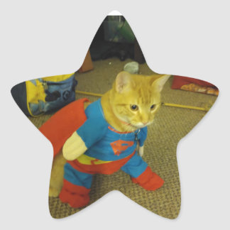 Super Cat Sticker