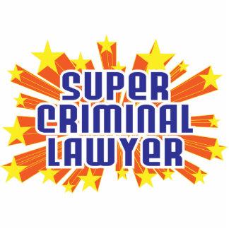 Super Criminal Lawyer Photo Cutouts