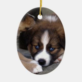 Super Cute Australian Shepherd Puppy Ceramic Oval Decoration