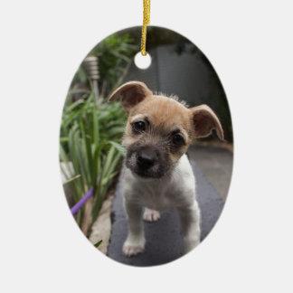 Super Cute Border Terrier puppy Ceramic Ornament