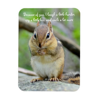 Super Cute Chipmunk Friendship Quote Rectangular Photo Magnet