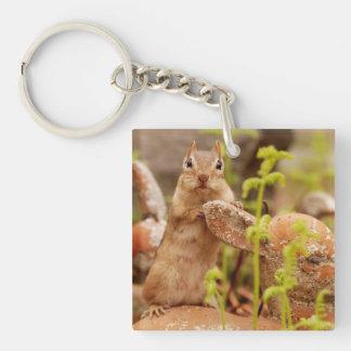 Super Cute Chipmunk Posing Keychain