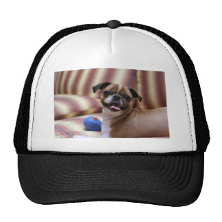 Super Cute dog with her favourite ball Trucker Hat