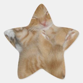 Super Cute Ginger Sleeping Kitten Star Sticker
