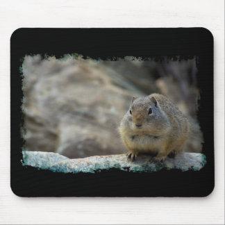 Super Cute Ground Squirrel Black Border Mouse Pad