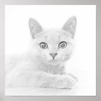 SUPER CUTE Kitten Portrait Photograph Poster