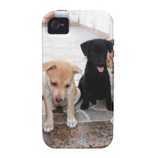 Super Cute Puppies Photo iPhone 4/4S Case