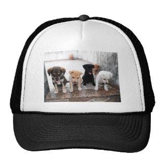 Super Cute Puppies Photo Hat