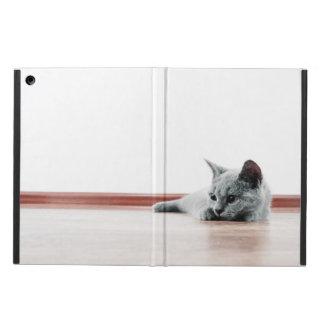 Super Cute Scottish Fold Kitten Cat Cover For iPad Air
