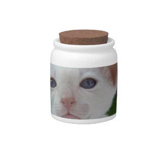 Super Cute Siamese Kitten Candy Jars