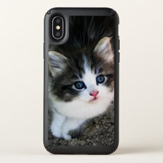 SUPER CUTE Stray Kitten Portrait Photograph Speck iPhone X Case