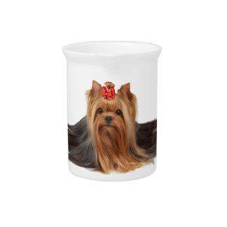 Super dog drink pitcher