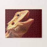 Super Happy Bearded Dragon Jigsaw Puzzle