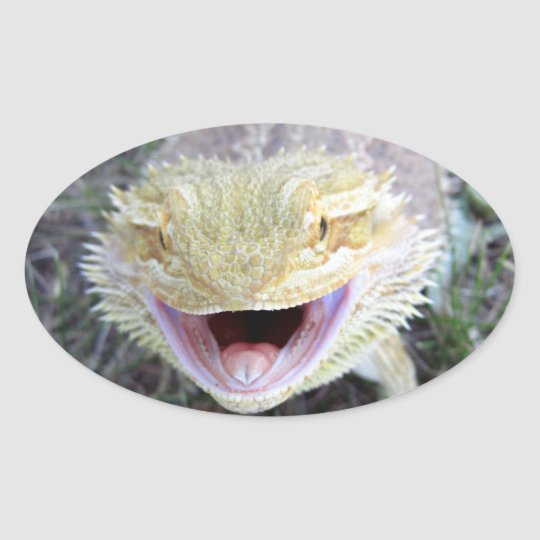 Super Happy Bearded Dragon Oval Sticker