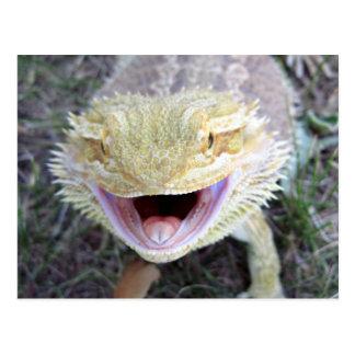 Super Happy Bearded Dragon Postcard