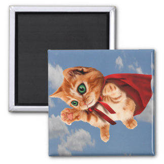 Super Kitty 2 Inch Square Magnet