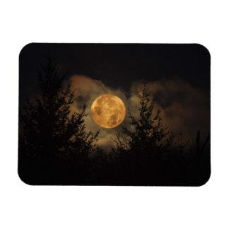 Super Moon 11-14-16 Magnet
