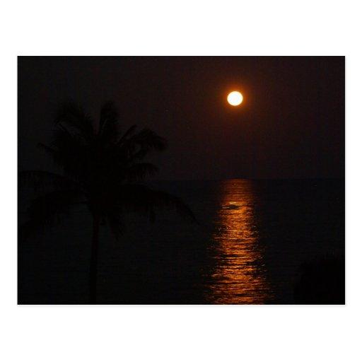 Super Moon over Ocean Postcards