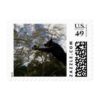 Super Snoop Postage Stamp