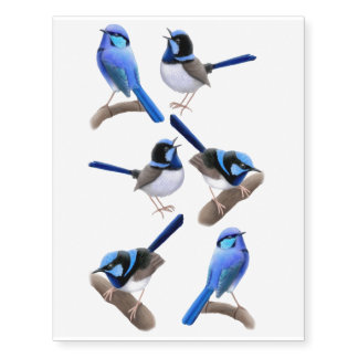 Superb Fairy Wren Birds Temporary Tattoos