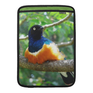 Superb Starling Sleeve For MacBook Air