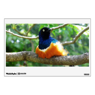 Superb Starling Wall Sticker