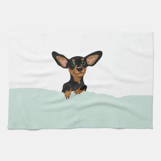 Supercute dachshund puppy under green duvet towel