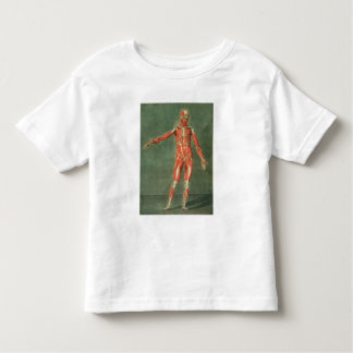 Superficial Muscular System of the Front of the Bo Toddler T-shirt