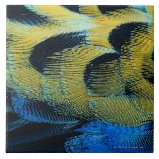 Superficie 4 de la pluma azulejo cuadrado grande
